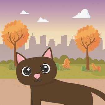 Кот мультфильм
