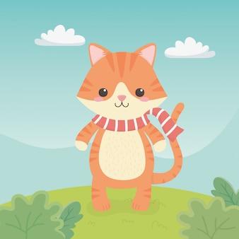 分野でかわいいと小さな猫