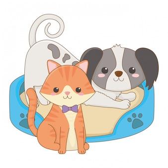 Изолированный дизайн мультяшный кот и собака