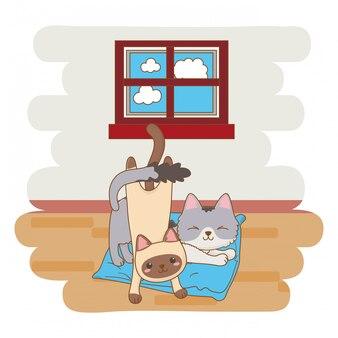 インテリアの家で遊ぶ猫