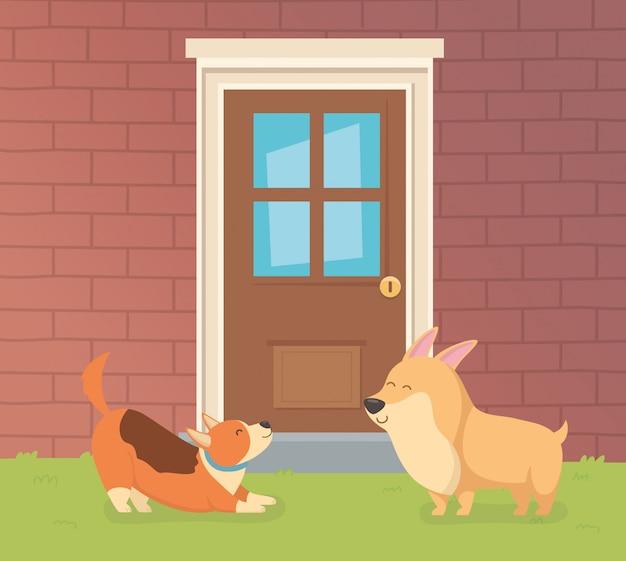 Симпатичные маленькие собачки-талисманы в домашнем саду