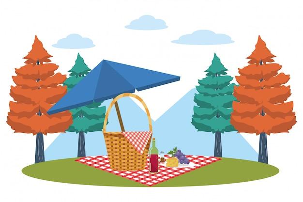 Корзина для пикника в лесу