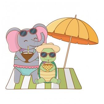 夏休みを楽しんでいるかわいい動物