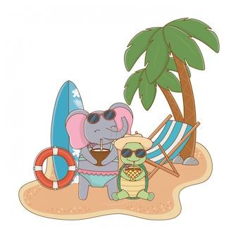 Милые животные наслаждаются летними каникулами