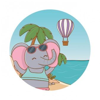 Милое животное наслаждается летними каникулами