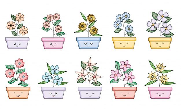 スクエアポットかわいいキャラクターの庭の植物のセット