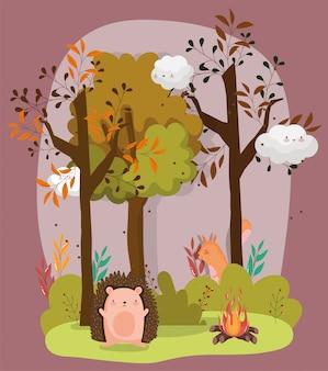 こんにちは秋のシーズンフラット