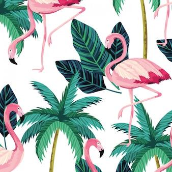 熱帯のフラミンゴ漫画