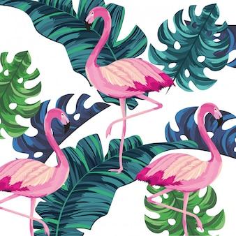 Мультфильм тропический фламинго