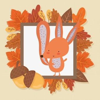 リスの葉葉こんにちは秋の図