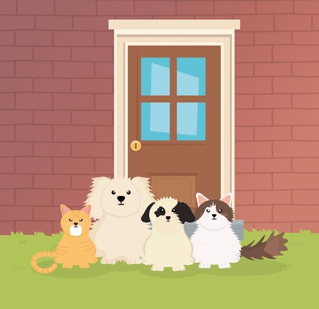 Собаки и кошки сидят вне дома по уходу за домашними животными