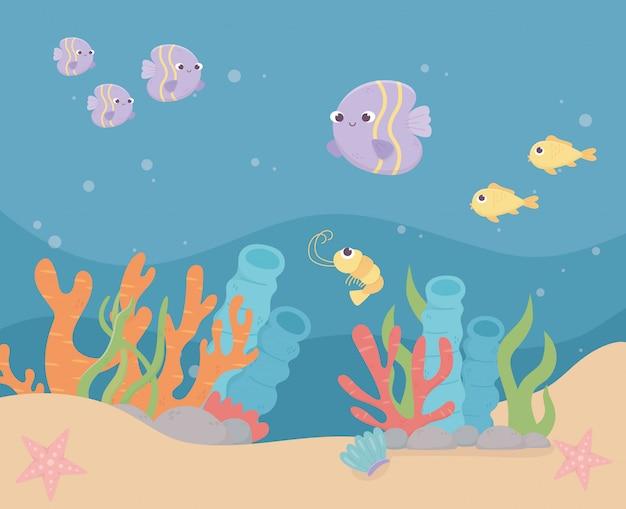 Рыбы, креветки, морские звезды, жизнь, коралловый риф, мультфильм под морем.