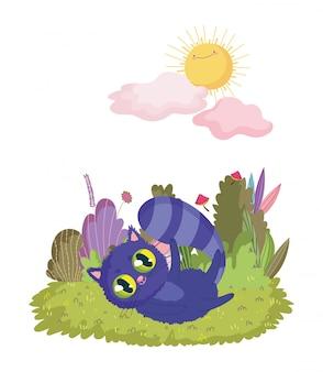 Страна чудес, кошачья листва, луг, солнце, облака