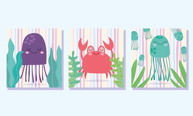海の下で、カニのクラゲは藻類の広い海洋生物の風景漫画を残します