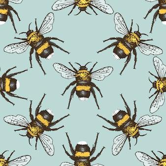 Жук-насекомое бесшовные модели, фон с выгравированным животным рисованной стиль