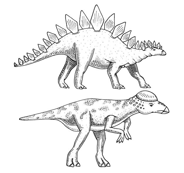 恐竜ステゴサウルス、パキケファロサウルス、レキソビサウルス、スケルトン、化石。先史時代の爬虫類、刻印された動物手描き。