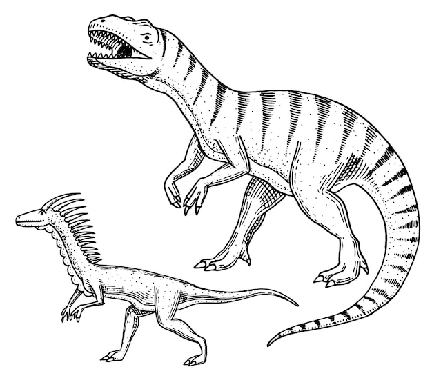 恐竜ティラノサウルスレックス、ヴェロキラプトル、ケラトサウルス、アフロベネーター、メガロサウルス、タルボサウルス、ストルチオミムススケルトン、化石。先史時代の爬虫類、刻まれた動物手描き