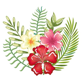 トロピカルとエキゾチックな花と葉