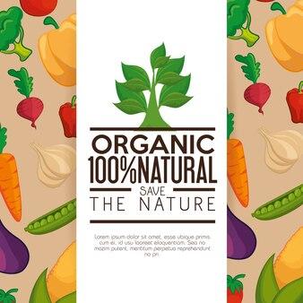 野菜と白とベージュの背景の上に葉のあるオーガニックラベル。ベクトル図。