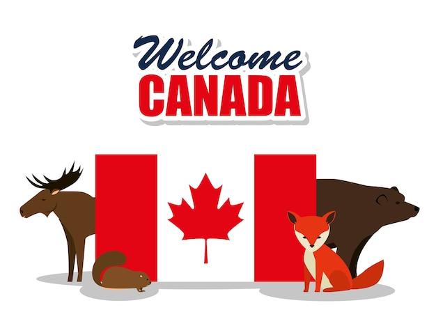 動物のカナダ文化グループベクトルイラストデザイン