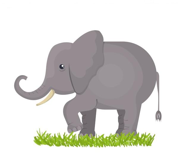 象の孤立したデザイン