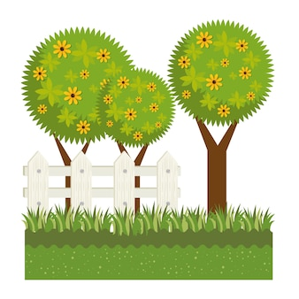 かわいい庭の植物栽培