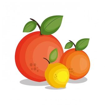 アイコンレモンオレンジデザイン