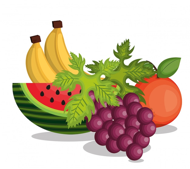 Установить мультфильм фрукты дизайн тропики