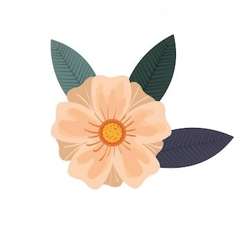アイコンの花のデザイン