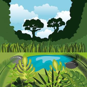 熱帯雨林のジャングルの自然の風景