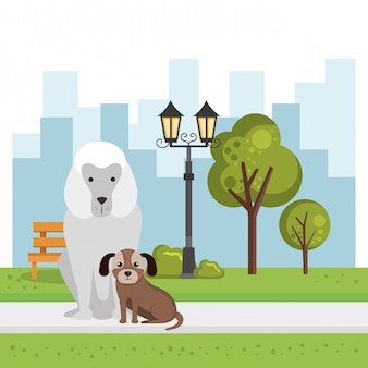 Милые собаки в парке