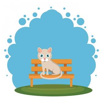 公園のシーンでかわいい猫