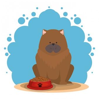 食物と一緒にかわいい犬