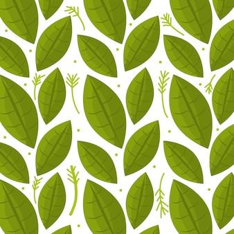 葉と葉の生態グラフィックのシームレスパターン