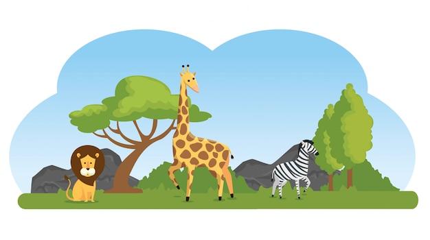 Симпатичные дикие животные в природном заповеднике