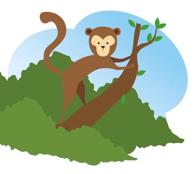 Обезьяна дикого животного в ветке дерева