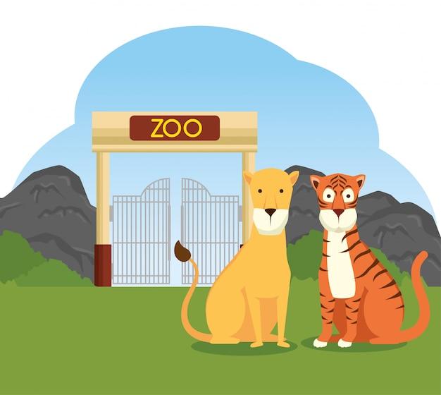 Тигр и лев дикого животного в зоопарке заповедника