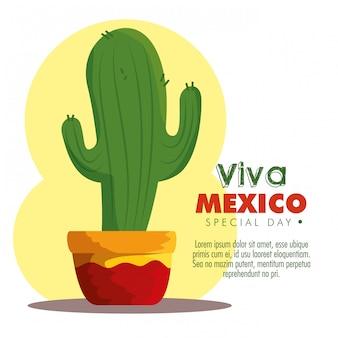 伝統的なメキシコのイベントのためのサボテンの植物