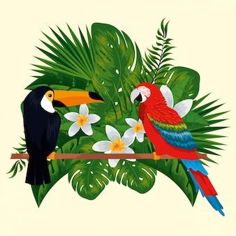 花と葉を持つオウム動物とオオハシ