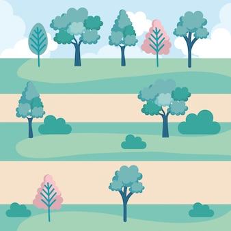 Значок сцены ландшафтного парка