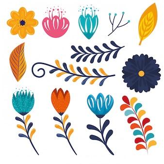 Набор цветов растений с ветвями листьев украшения к событию