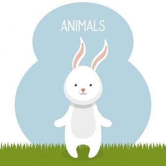Милый кролик в поле пейзаж персонажа