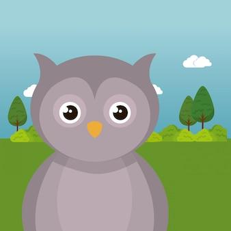 Милая сова в поле пейзаж персонажа