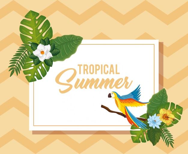 オウムと花を持つ熱帯の夏イラスト