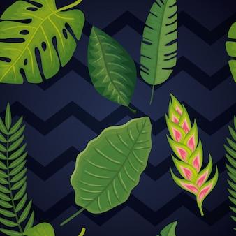 Бесшовный фон из цветов геликонии с листьями тропиков