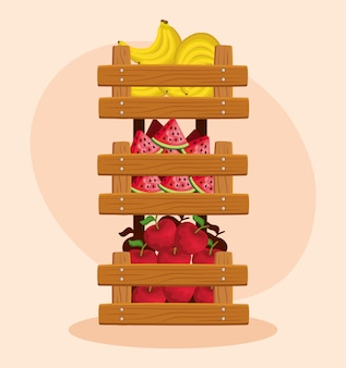 Полезные бананы и арбузы с яблоками и фруктами