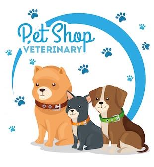 小さな犬と獣医のペットショップ