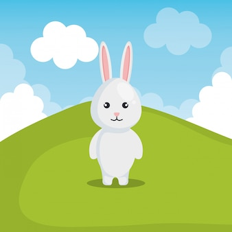 風景の中のかわいいウサギ