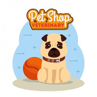 Зоомагазин ветеринарный с милой собакой и шариковой игрушкой