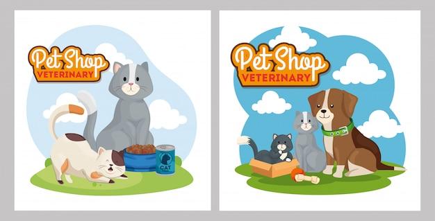 Иллюстрация набор зоомагазина ветеринарного